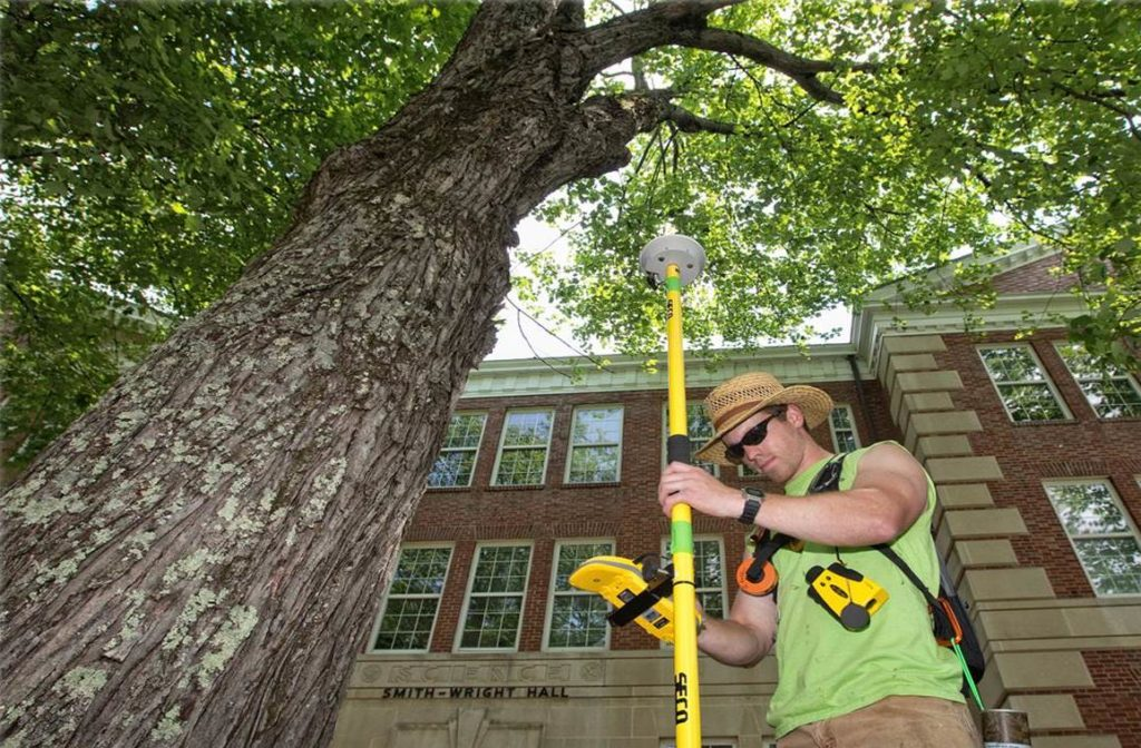 Arborist Consultations-Temple Terrace FL Tree Trimming and Stump Grinding Services-We Offer Tree Trimming Services, Tree Removal, Tree Pruning, Tree Cutting, Residential and Commercial Tree Trimming Services, Storm Damage, Emergency Tree Removal, Land Clearing, Tree Companies, Tree Care Service, Stump Grinding, and we're the Best Tree Trimming Company Near You Guaranteed!
