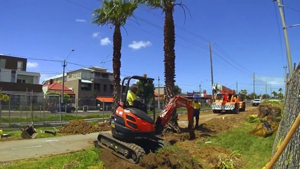 Palm Tree Removal-Temple Terrace FL Tree Trimming and Stump Grinding Services-We Offer Tree Trimming Services, Tree Removal, Tree Pruning, Tree Cutting, Residential and Commercial Tree Trimming Services, Storm Damage, Emergency Tree Removal, Land Clearing, Tree Companies, Tree Care Service, Stump Grinding, and we're the Best Tree Trimming Company Near You Guaranteed!