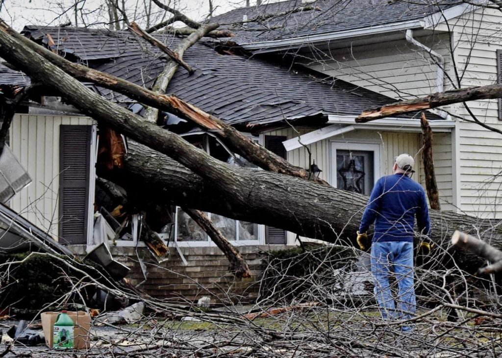 Storm Damage-Temple Terrace FL Tree Trimming and Stump Grinding Services-We Offer Tree Trimming Services, Tree Removal, Tree Pruning, Tree Cutting, Residential and Commercial Tree Trimming Services, Storm Damage, Emergency Tree Removal, Land Clearing, Tree Companies, Tree Care Service, Stump Grinding, and we're the Best Tree Trimming Company Near You Guaranteed!