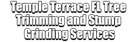 Temple Terrace FL Tree Trimming and Stump Grinding Services